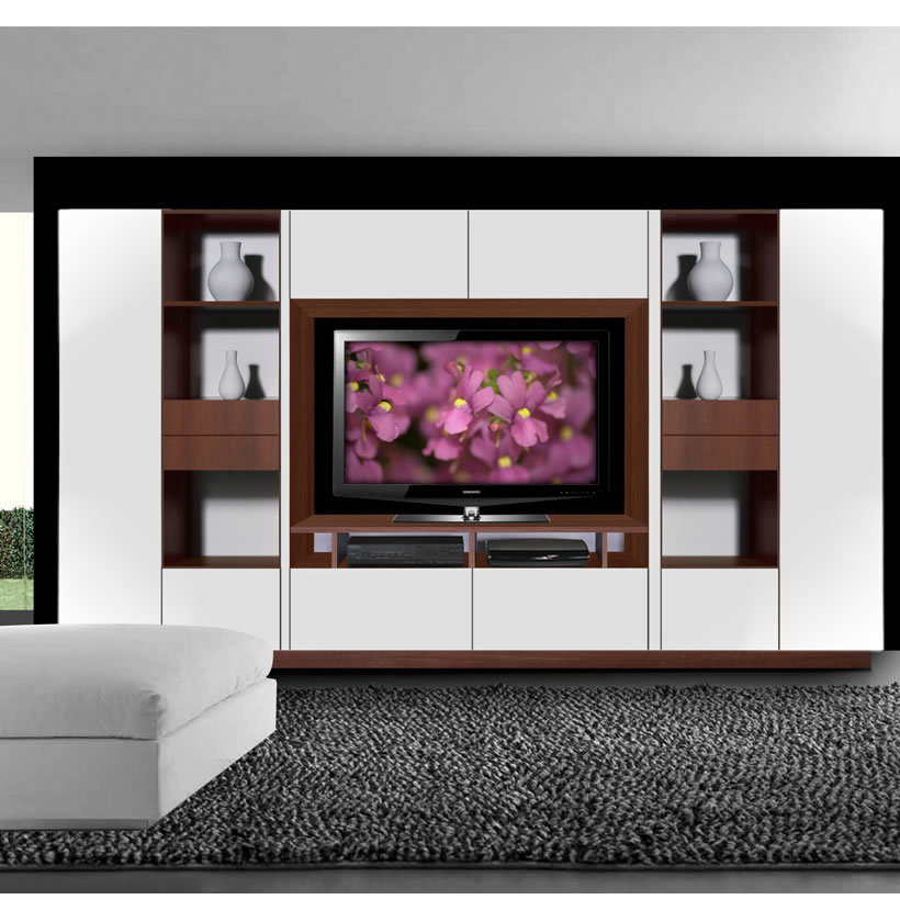 Lucus Entertainment Wall Unit w Open Space and Closed ...